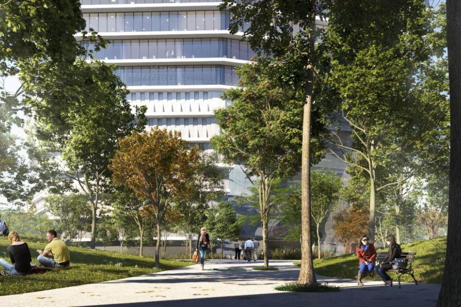 משרדים להשכרה בפרויקט TOHA - תמונה 3